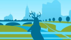 Branding, Logo, Events, Animation, Pacemour Creative, Columbus, Ohio